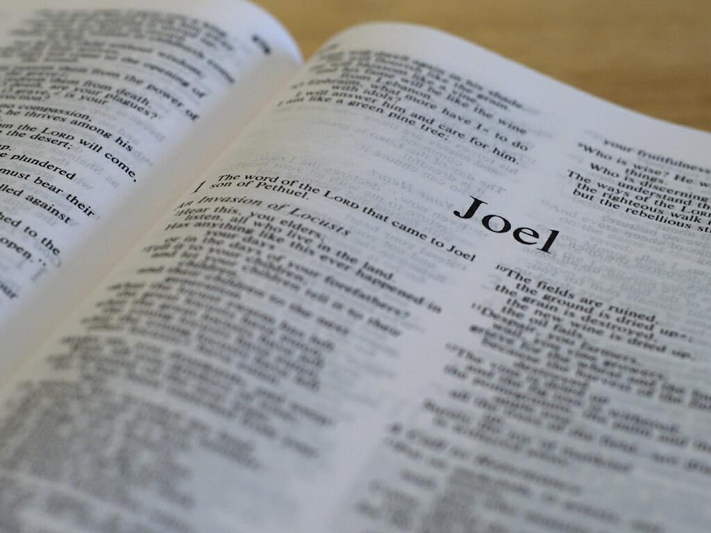 Joel 1:1-3:21