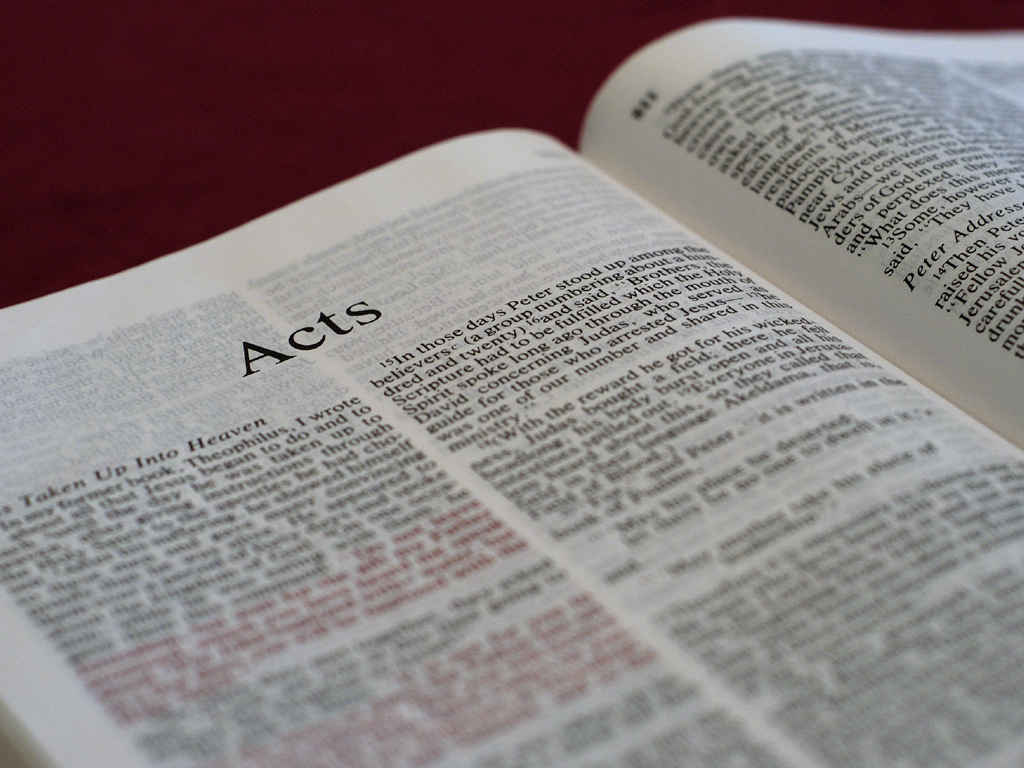 Acts 10:39 through Acts 11:30